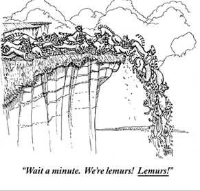 "Paul Noth : ""Wait a minute. We're lemurs! Lemurs!"" - Cartoonbank.com_1230089039586"