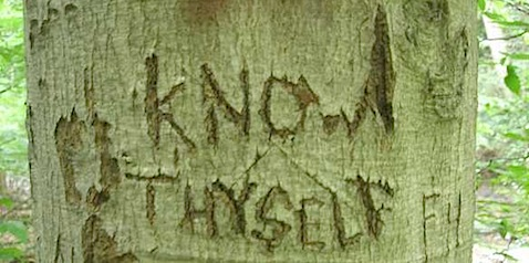 know theyself carved in tree.jpeg