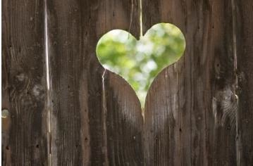 heart on wood.jpg